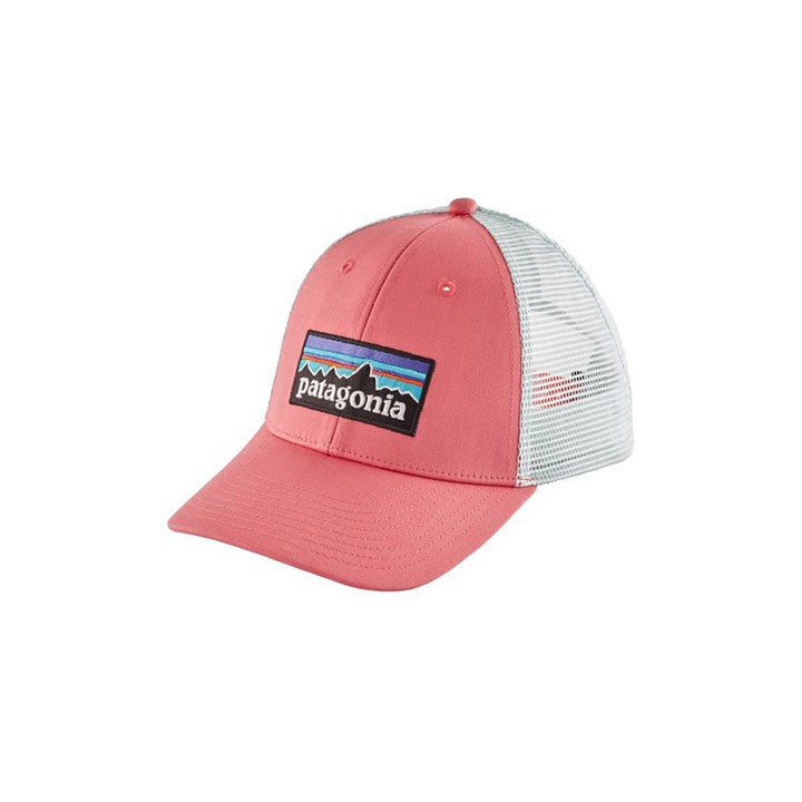 Patagonia P-6 Logo LoPro Tucker Pet Sticker Pink - Monkshop